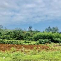 Sở Hữu đất Nền Ven Biển Quảng Trị Giá Siêu Rẻ đầu Tư Chỉ 800 Nghìn/m2