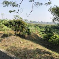 2000m2 Phía Trước Là Cánh đồng Sau Là Suối Phù Hợp Nghỉ Dưỡng Tại Liên Sơn, Lương Sơn, Hòa Bình