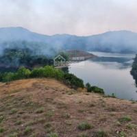 Chính Chủ Bán Nhanh đất Mặt Hồ Thủy điện Hòa Bình Với Diện Tích 7000m2 Tại Cao Phong, Hòa Bình