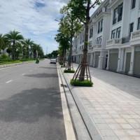 Chính Chủ Cho Thuê Nhanh Shophouse đường đại Lộ Châu âu, Vinhomes Star City Thanh Hóa, Dt: 1225m2, 140m2, 175m2