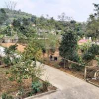 Bán Nhà đất Tiện Làm Nhà Xưởng Hoặc Biệt Thự Tại Phú Thọ Diện Tích 2700m2 đường Vào 6m