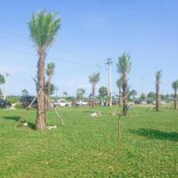 Chính Chủ Bán Lô đất 140m2 Trung Tâm Dự án An Phú Giá Hấp Dẫn