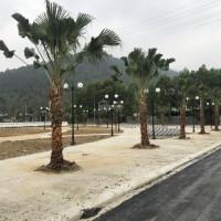 Chính Thức Nhận ưu Tiên Dự án Thanh Sơn Riverside Garden