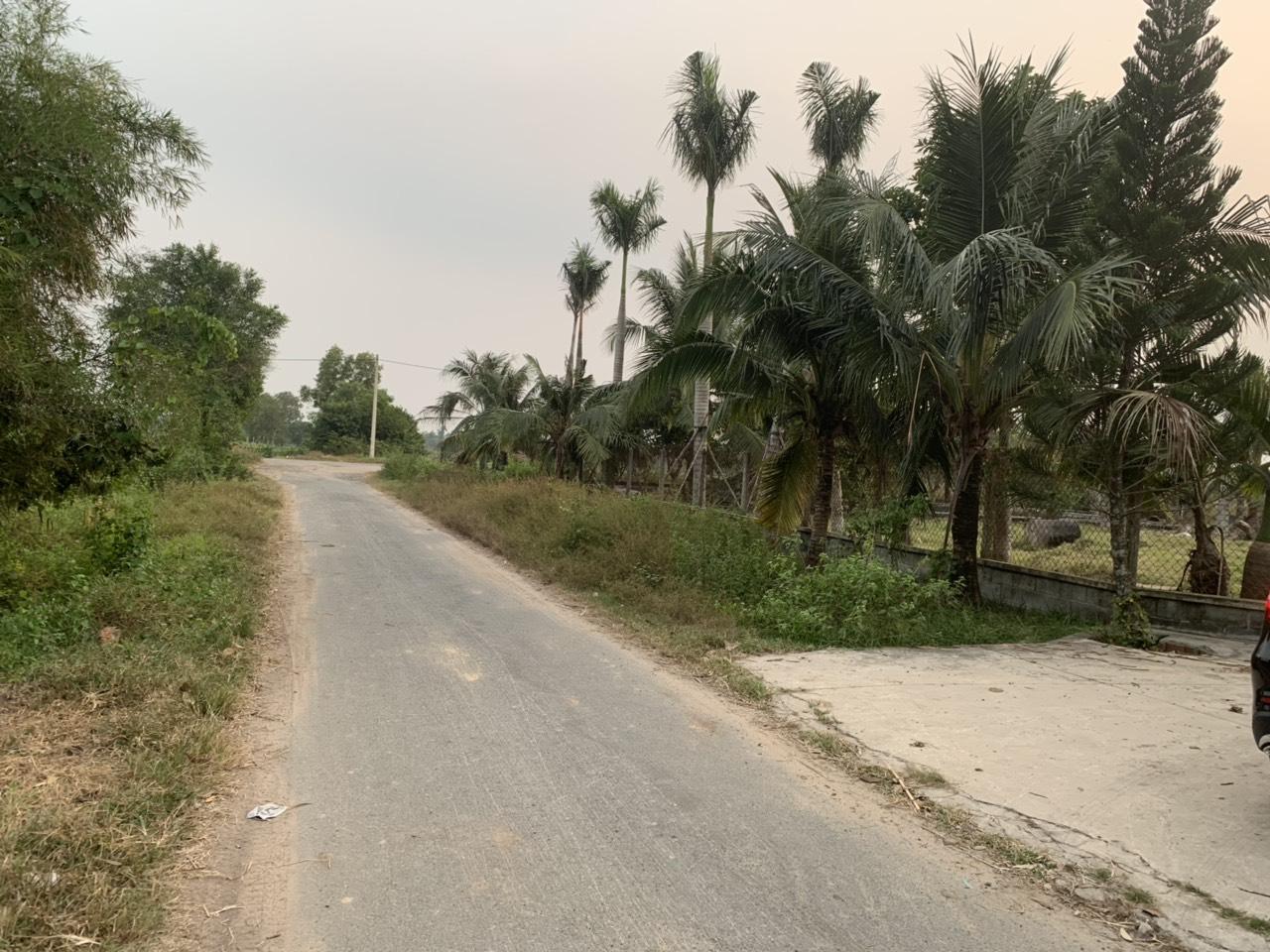 Bán 11,7786m2 đất tại đường Huỳnh Thị Huề, Thái Mỹ, Củ Chi, TPHCM