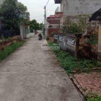 Chính Chủ Bán Nhanh đất Song Quỳnh, Huyện Gia Bình, Tỉnh Bắc Ninh 0986287189