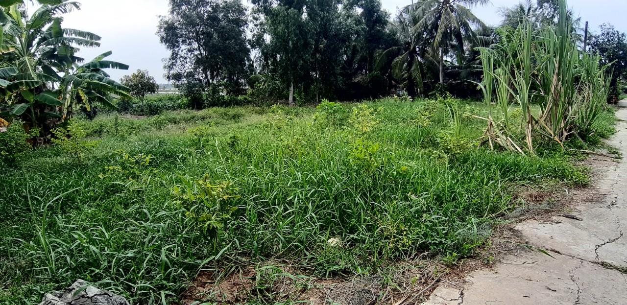 Bán đất Bình Phước giá rẻ đất bao đẹp 1000m2 chỉ có 440 triệu