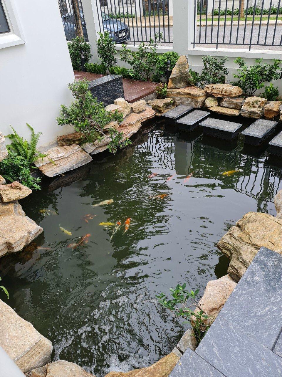 Cần bán vài lô vị trí B3 Dự án Times Garden Vĩnh Yên