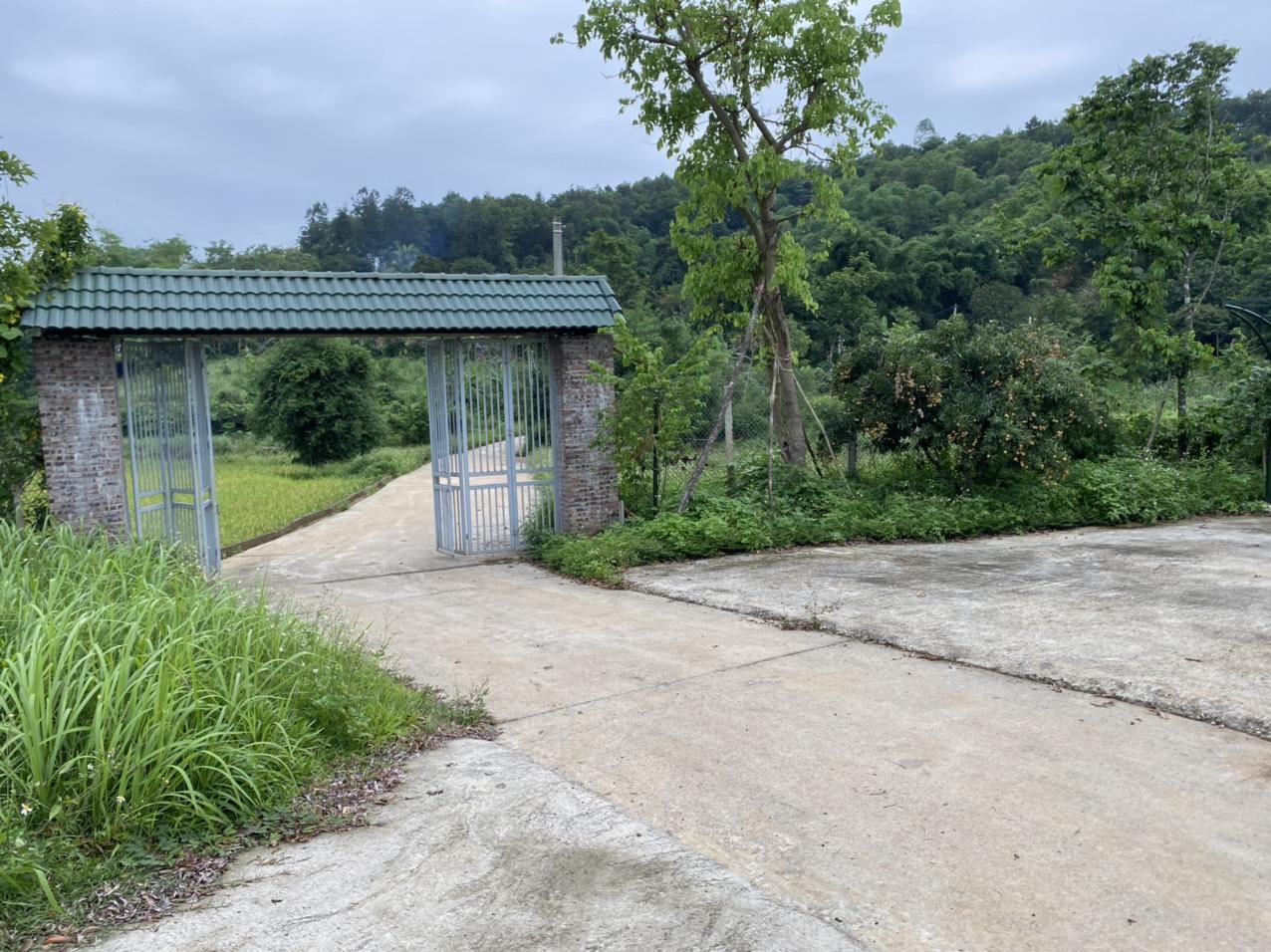Bán đất tại thị trấn Lương Sơn-mảnh đất đáng đầu tư