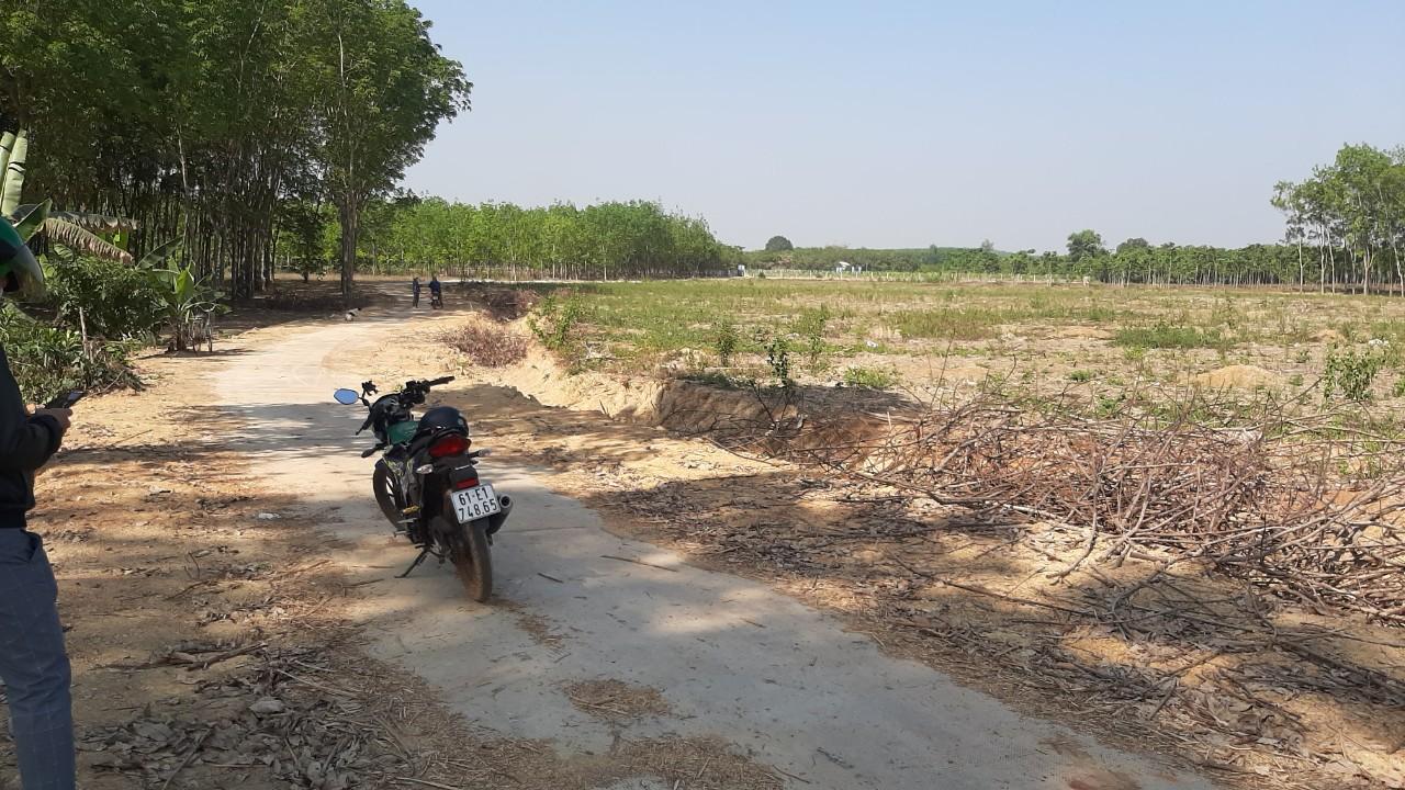 2 : Đồng Tiến Đồng Phú nhượng 2 sào đất đẹp đường thông , dân cư bao quanh Sổ Sẵn