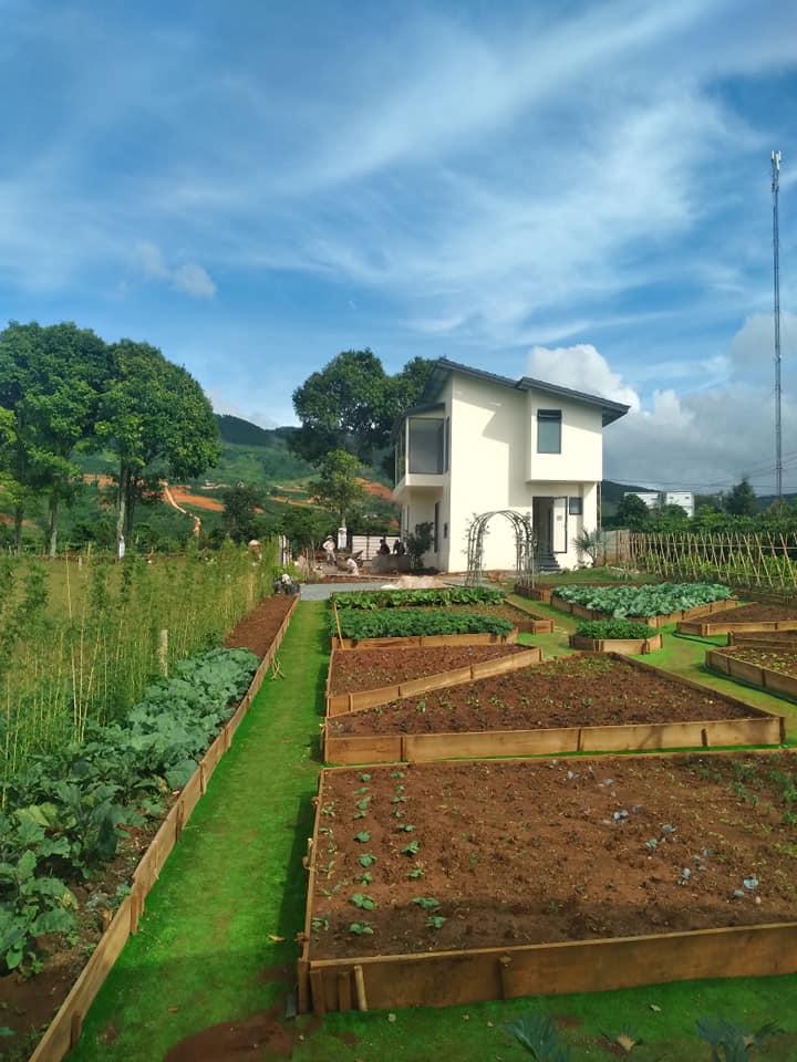 Cần bán biệt thự nghỉ dưỡng tại Đông Thanh, Lâm Hà, 625m2, chỉ 3,8 triệu/m2, co sổ thổ cư