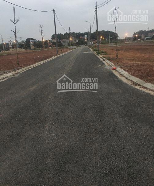 Cần bán Đất nền dự án đường Tỉnh lộ 295, Xã Yên Mỹ, Diện tích 100m², Giá Thương lượng