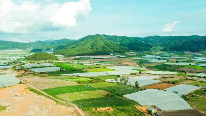 Cần bán Đất dốc tình sao mai, Xã Ka Đơn, Diện tích 533m², Giá 500 Triệu