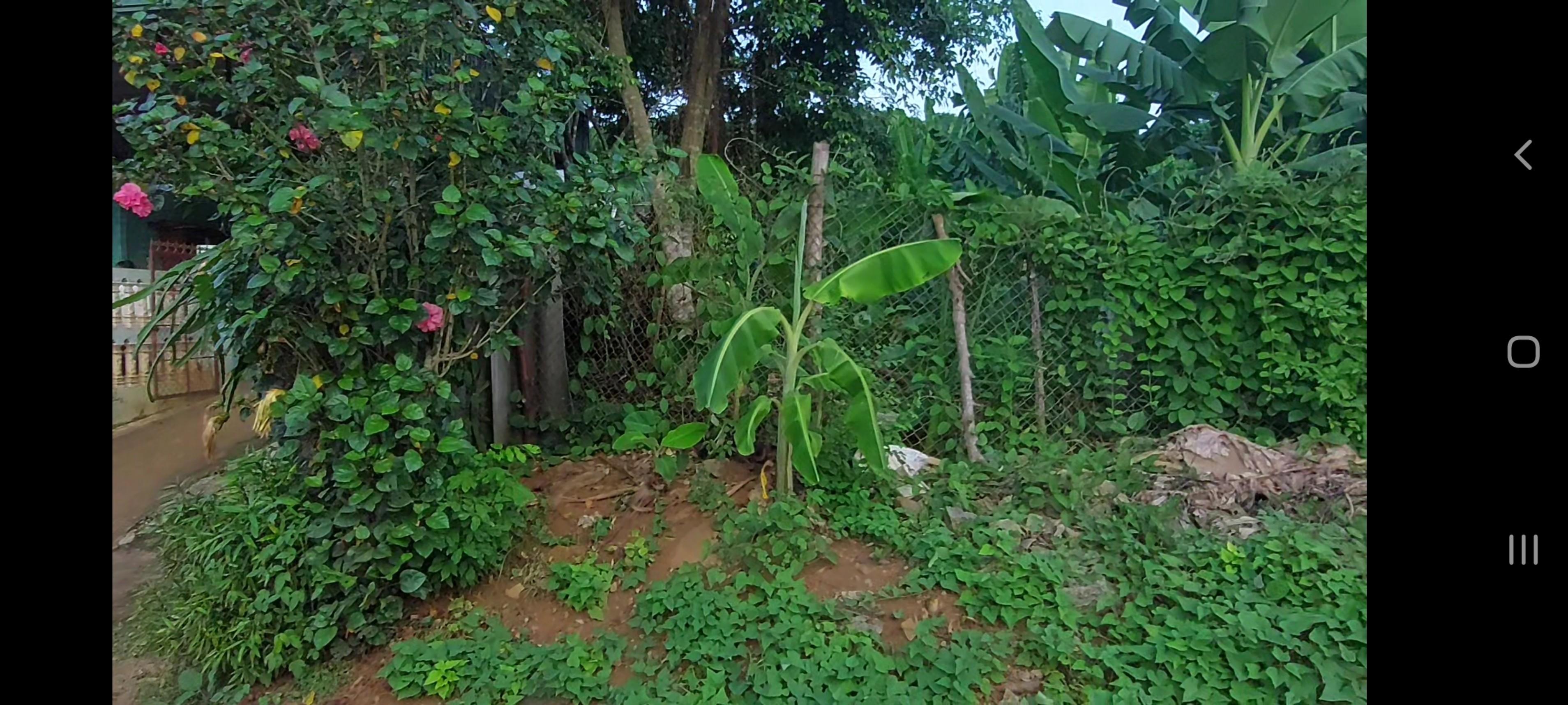 Cần bán Đất đường Quốc Lộ 6, Thị trấn Cao Phong, Diện tích 486m², Giá Thương lượng - LH: 0947266511