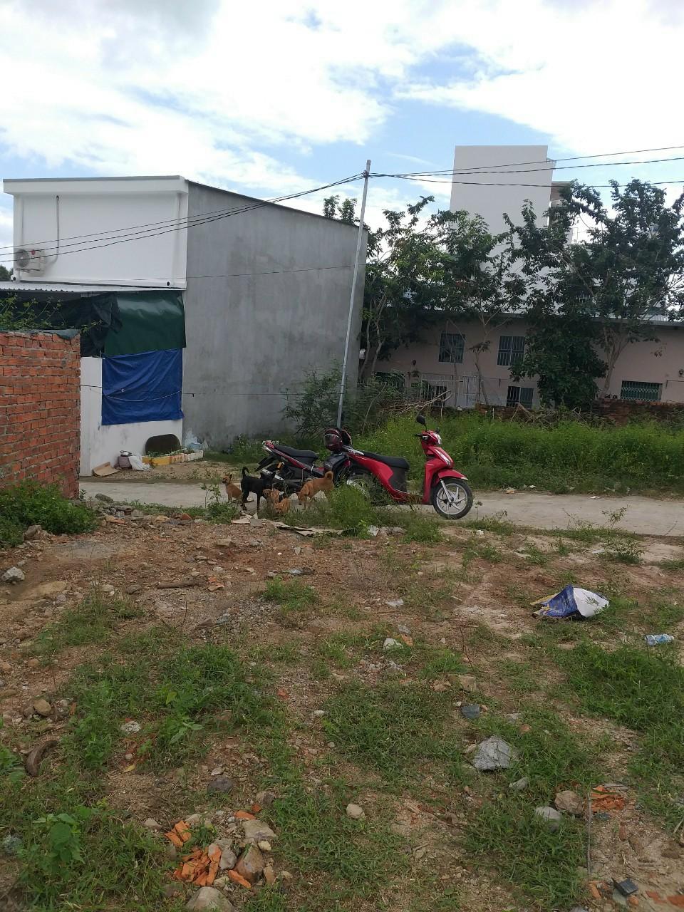 Cần bán Đất đường Hoàng Minh Thảo, Xã Phước Đồng, Diện tích 61m², Giá 630 Triệu