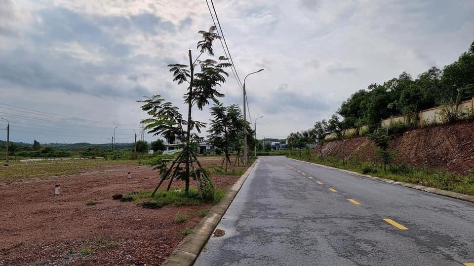 Cần bán Đất đường Hùng Vương, Phường Đông Lương, Diện tích 156m², Giá Thương lượng - LH: 0846661456
