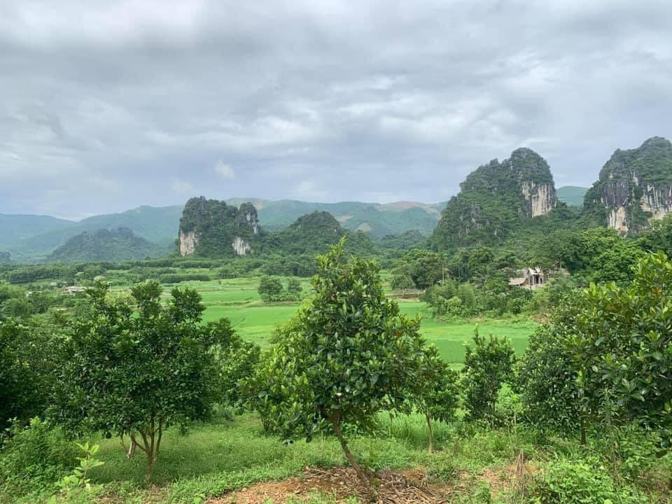 Cần bán Đất Xã Cao Dương, Lương Sơn, Diện tích 32000m², Giá Thương lượng - LH: 0969622791