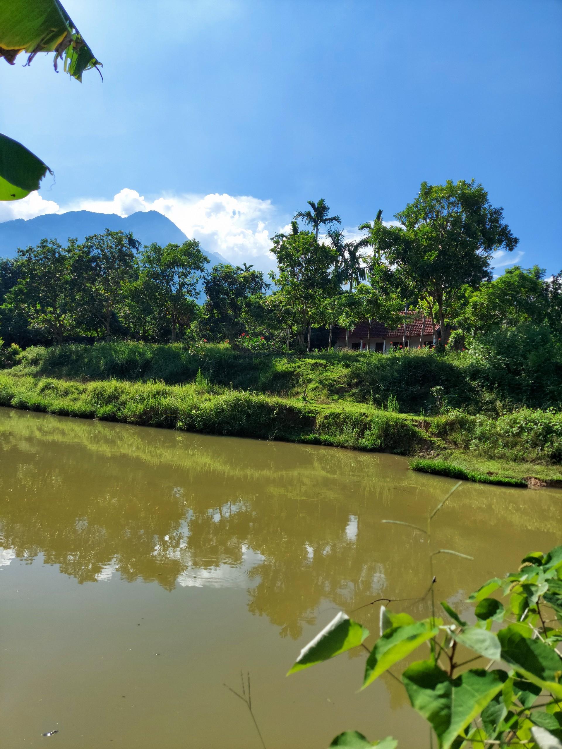 Cần bán Đất đường Tỉnh Lộ 87A, Xã Vân Hòa, Diện tích 4705m², Giá Thương lượng - LH: 0975263992