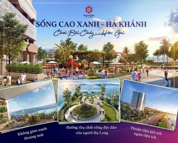Cần bán Căn hộ chung cư dự án The Ruby Hạ Long, Diện tích 8590m², Giá Thương lượng