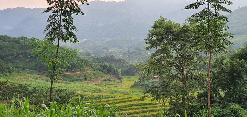 Cần bán Đất Xã Yên Thượng, Cao Phong, Diện tích 3500m², Giá 560 Triệu - LH: 0947266511