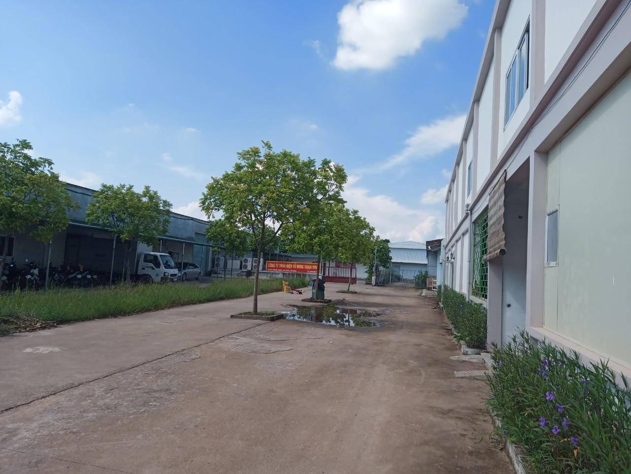 Cho thuê Kho - Nhà xưởng đường Tỉnh Lộ 292, Xã An Hà, Diện tích 5000m², Giá Thương lượng - LH: 0982125518