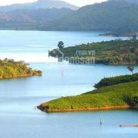 Chính Chủ Cho Thuê Nhanh đất Làm Homestay Gần Biển Hồ - Tiên Sơn Pleiku View Hồ Tuyệt đẹp